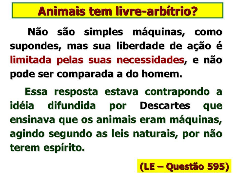 Animais tem livre-arbítrio