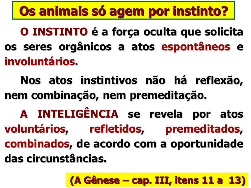 Os animais só agem por instinto