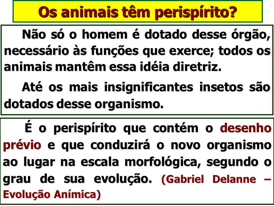 Os animais têm perispírito