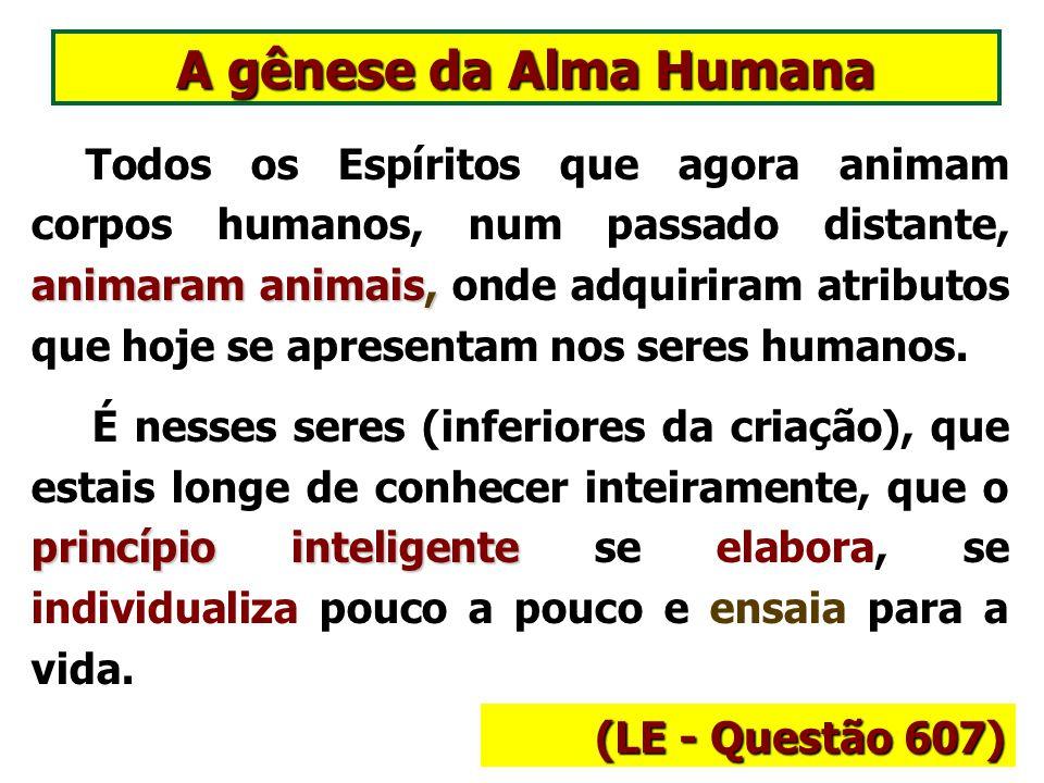 A gênese da Alma Humana (LE - Questão 607)