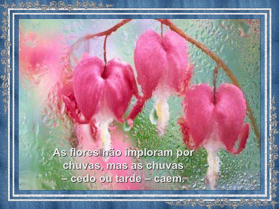 As flores não imploram por chuvas, mas as chuvas – cedo ou tarde – caem.