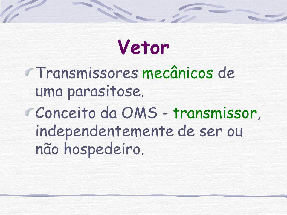 Vetor Transmissores mecânicos de uma parasitose.