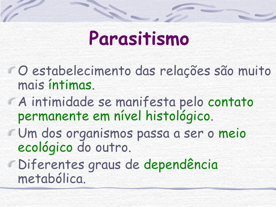 Parasitismo O estabelecimento das relações são muito mais íntimas.
