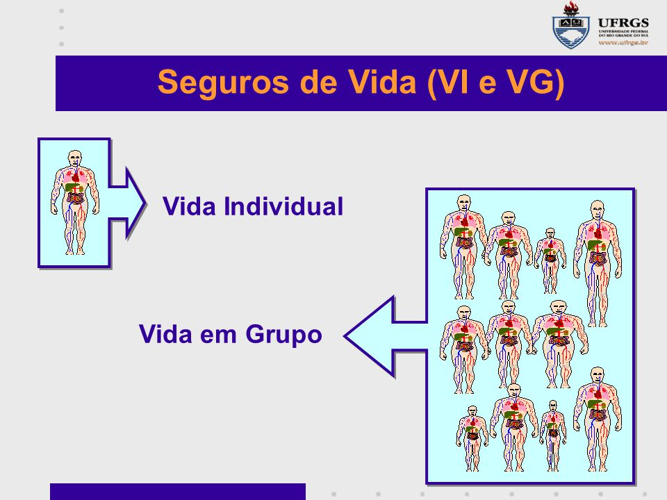 Seguros de Vida (VI e VG)
