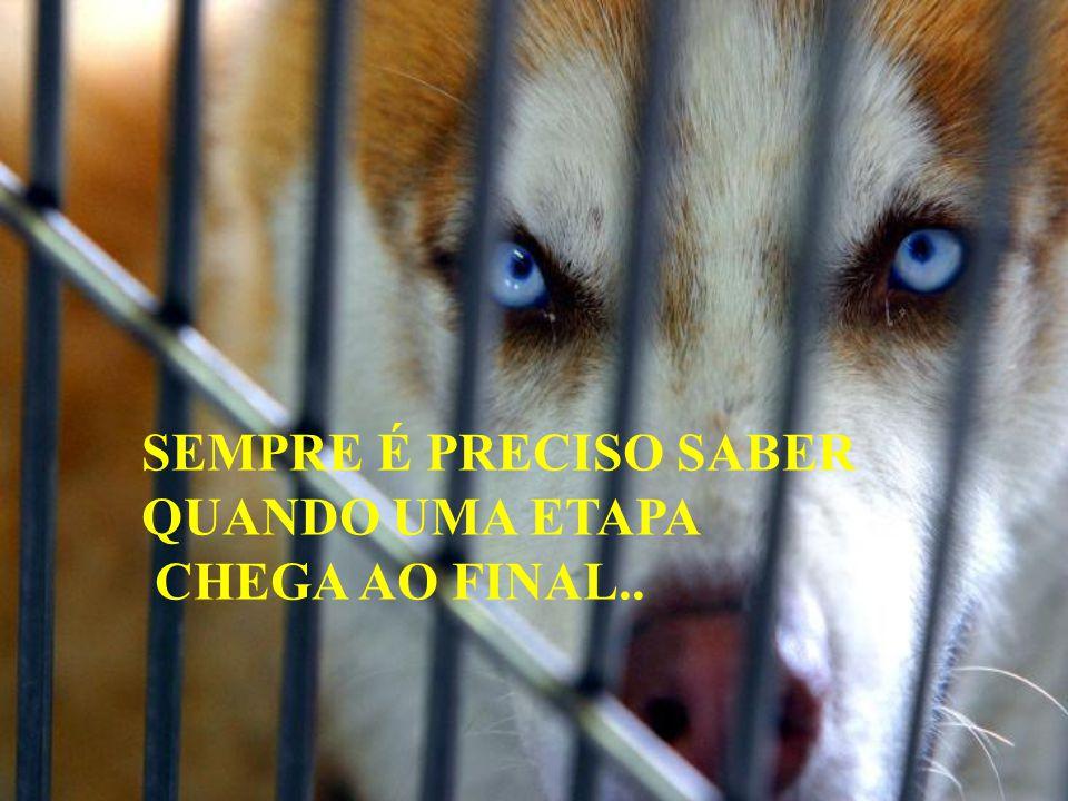 SEMPRE É PRECISO SABER QUANDO UMA ETAPA CHEGA AO FINAL..
