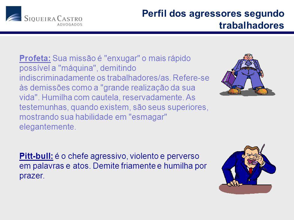Perfil dos agressores segundo trabalhadores
