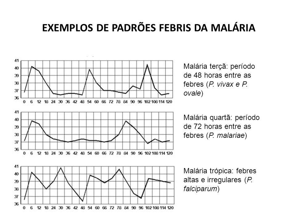 EXEMPLOS DE PADRÕES FEBRIS DA MALÁRIA