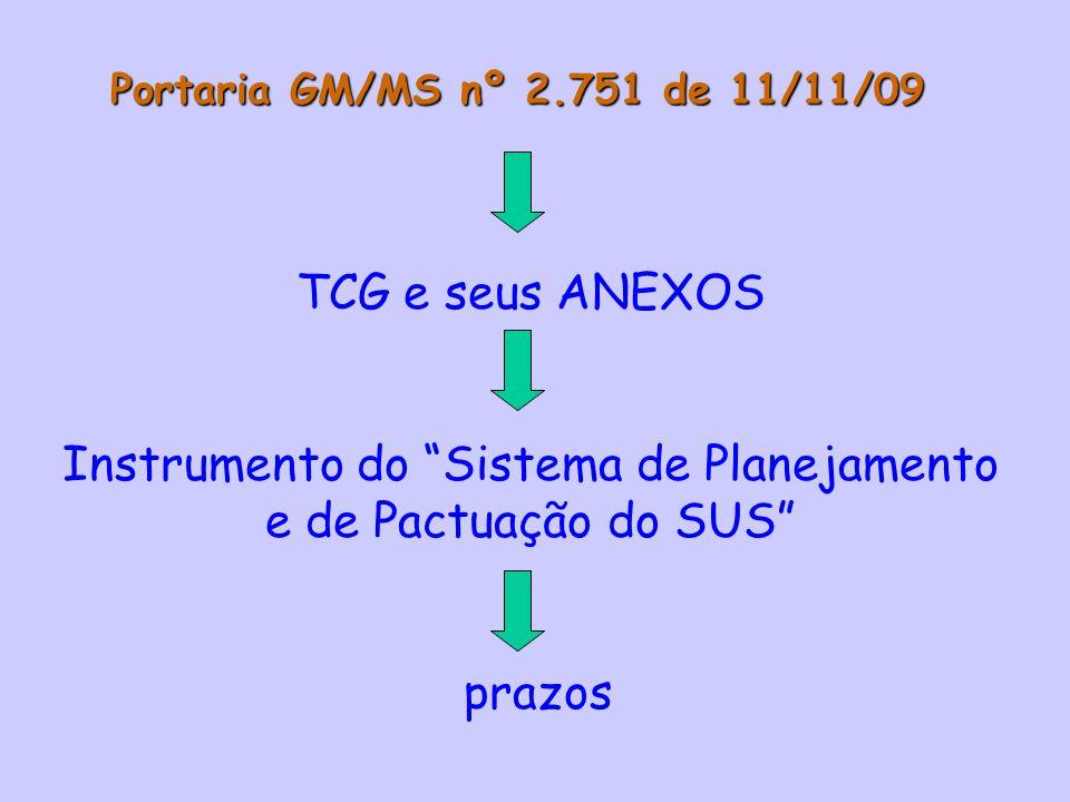 Instrumento do Sistema de Planejamento e de Pactuação do SUS