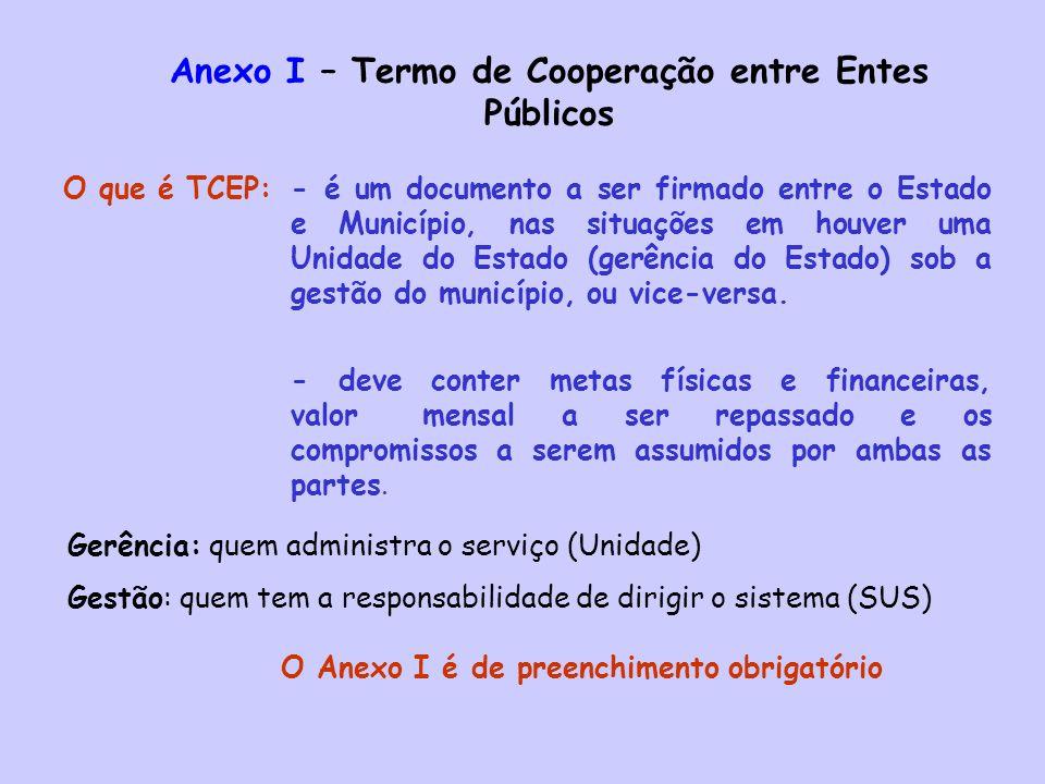Anexo I – Termo de Cooperação entre Entes Públicos