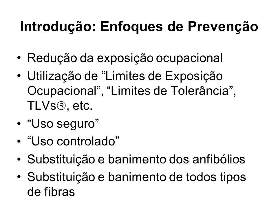 Introdução: Enfoques de Prevenção