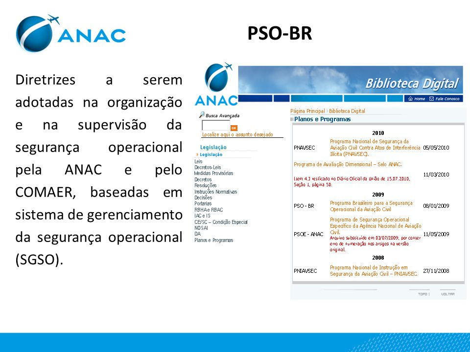 PSO-BR