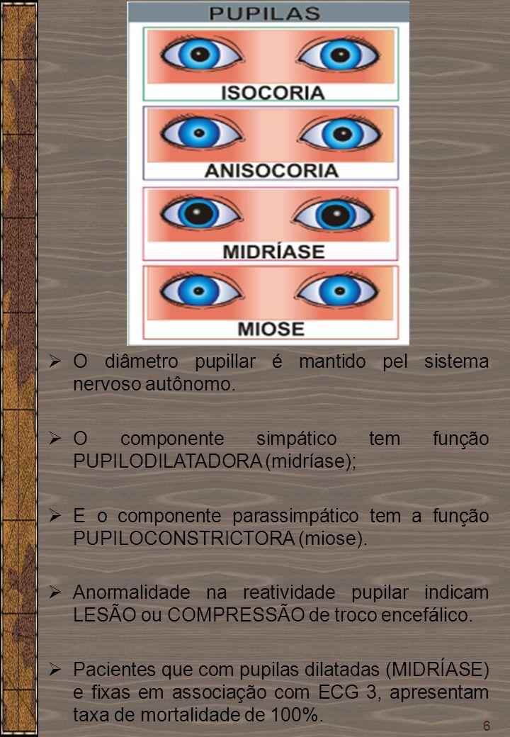 O diâmetro pupillar é mantido pel sistema nervoso autônomo.