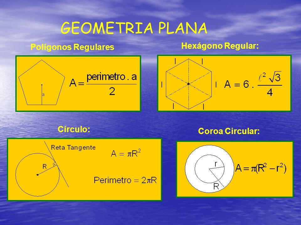 GEOMETRIA PLANA Hexágono Regular: Polígonos Regulares Círculo: