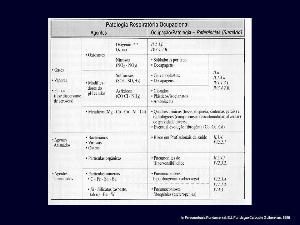 In Pneumologia Fundamental, Ed. Fundaçao Calouste Gulbenkian, 1995