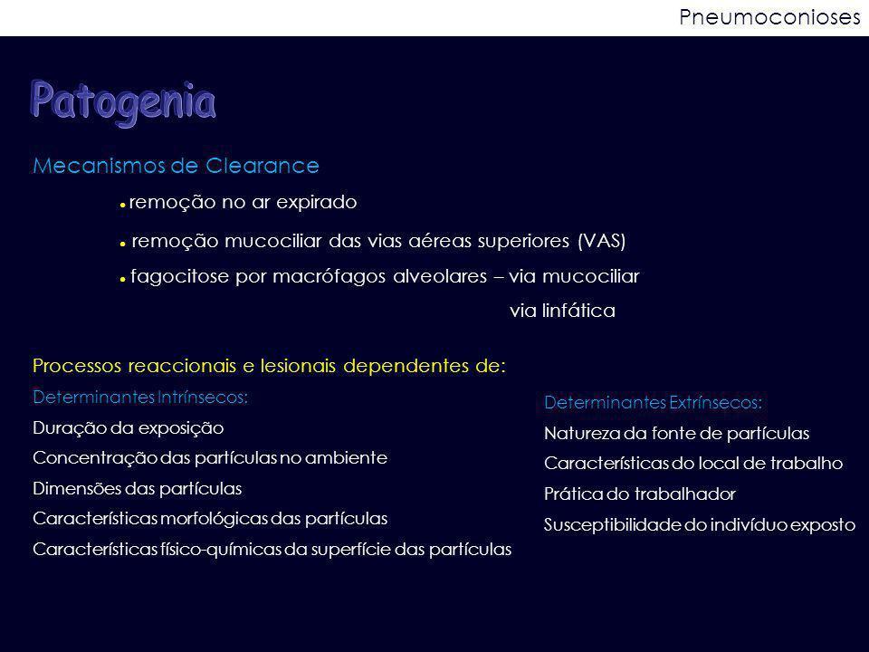 Patogenia Pneumoconioses Mecanismos de Clearance