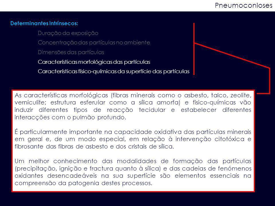 Pneumoconioses Determinantes Intrínsecos: Duração da exposição. Concentração das partículas no ambiente.