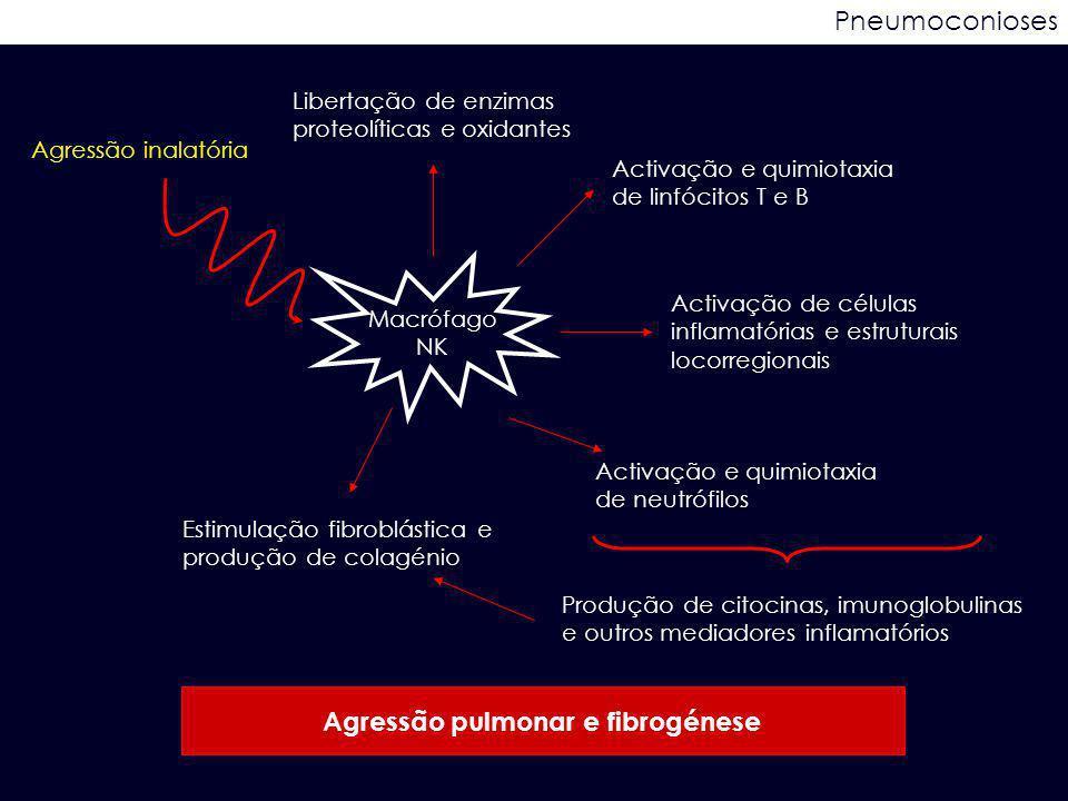 Agressão pulmonar e fibrogénese