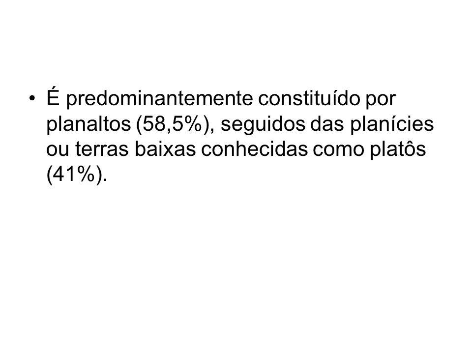 É predominantemente constituído por planaltos (58,5%), seguidos das planícies ou terras baixas conhecidas como platôs (41%).