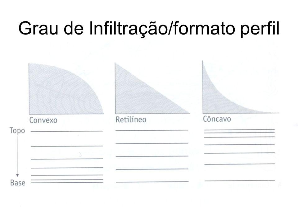 Grau de Infiltração/formato perfil