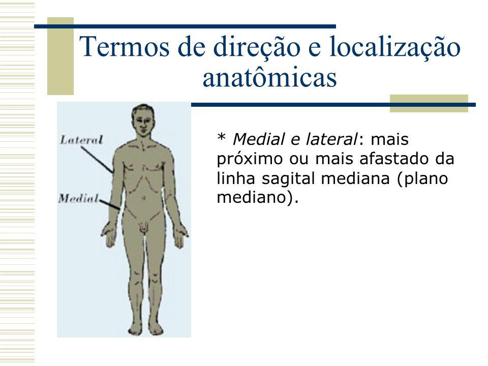 Termos de direção e localização anatômicas