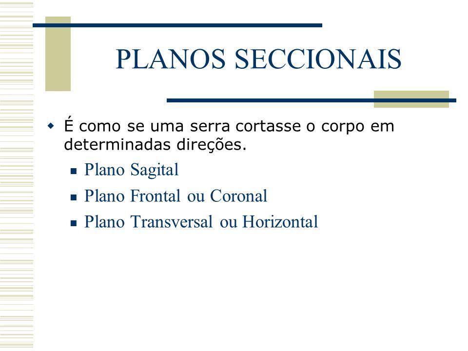 PLANOS SECCIONAIS Plano Sagital Plano Frontal ou Coronal