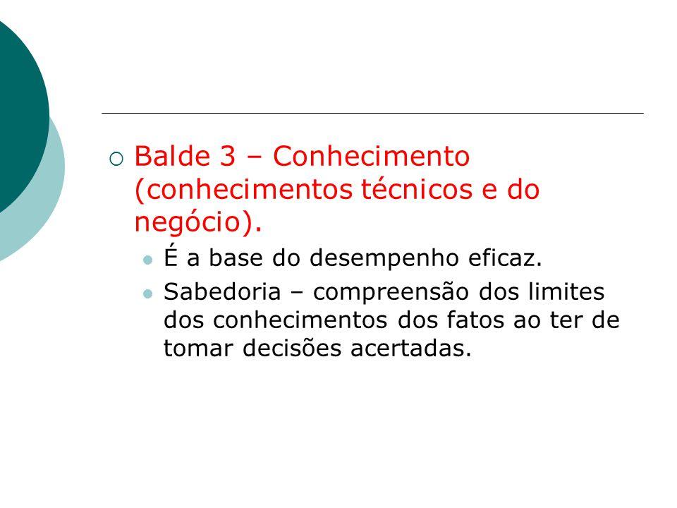 Balde 3 – Conhecimento (conhecimentos técnicos e do negócio).