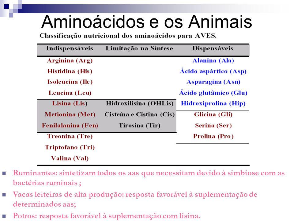 Aminoácidos e os Animais