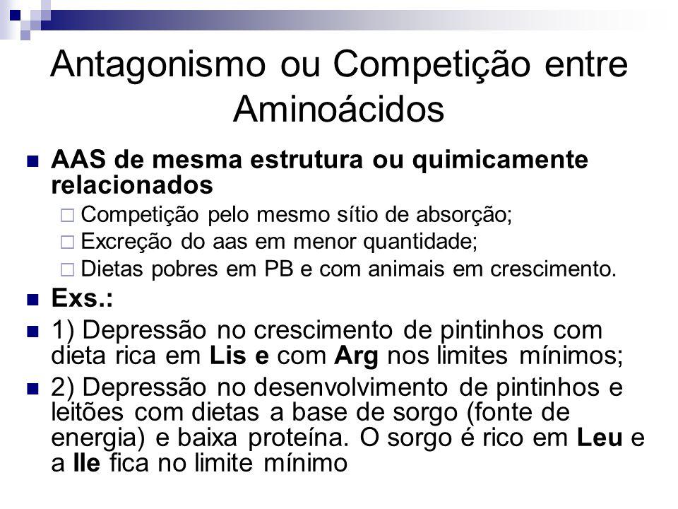 Antagonismo ou Competição entre Aminoácidos