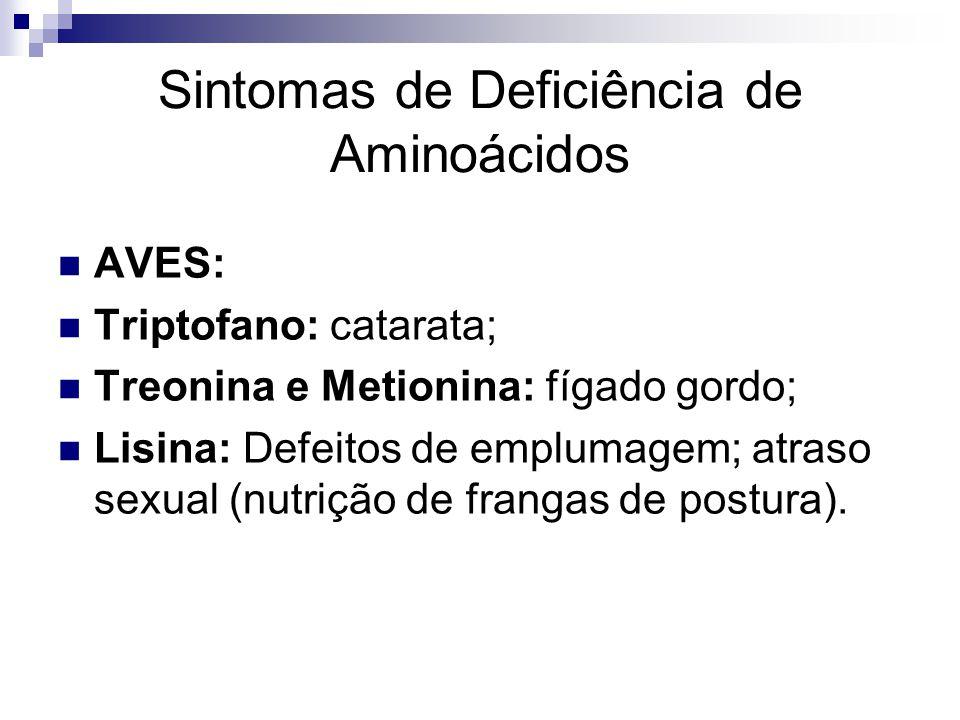 Sintomas de Deficiência de Aminoácidos