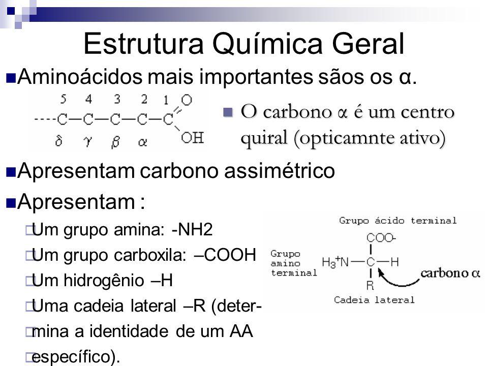 Estrutura Química Geral