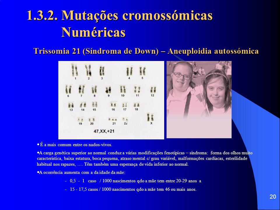 07-04-2017 1.3.2. Mutações cromossómicas Numéricas Trissomia 21 (Síndroma de Down) – Aneuploidia autossómica.