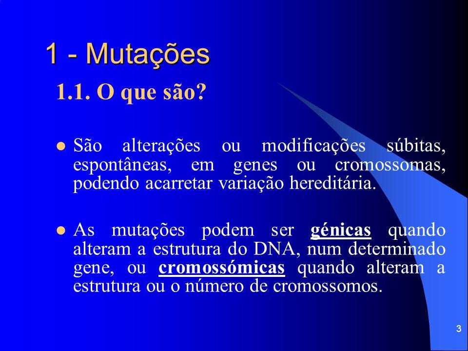 1 - Mutações 1.1. O que são São alterações ou modificações súbitas, espontâneas, em genes ou cromossomas, podendo acarretar variação hereditária.