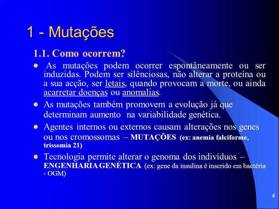 1 - Mutações 1.1. Como ocorrem