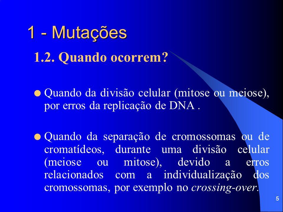 1 - Mutações 1.2. Quando ocorrem