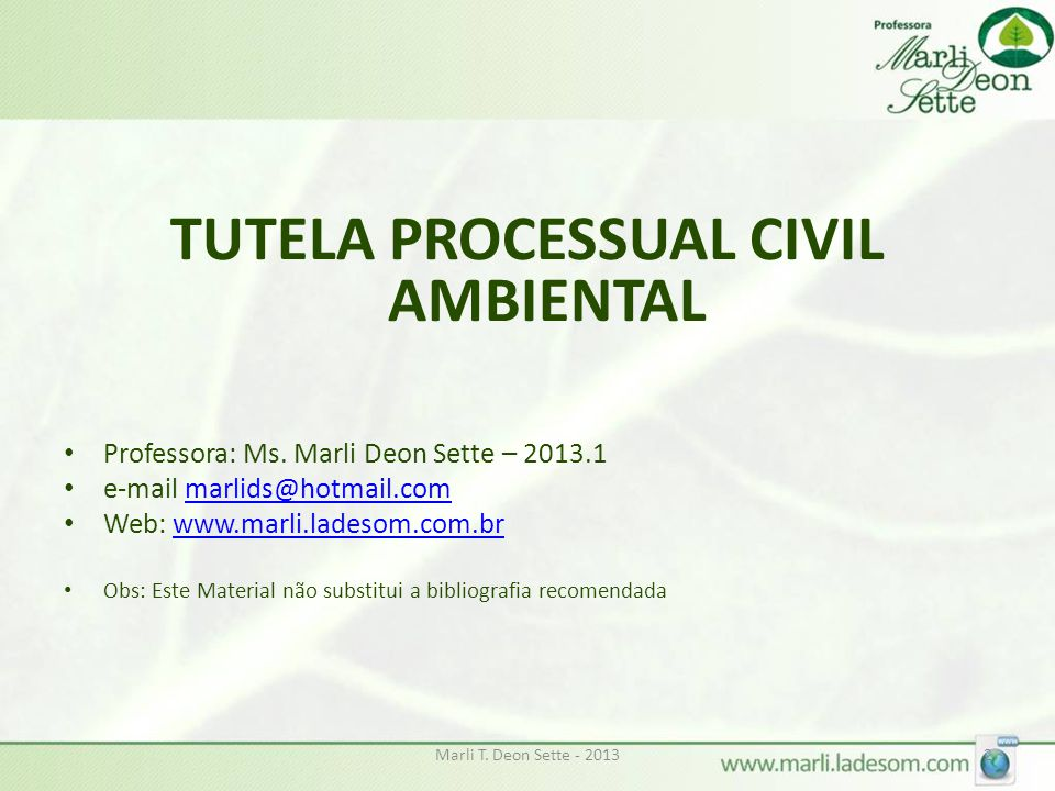 TUTELA PROCESSUAL CIVIL AMBIENTAL