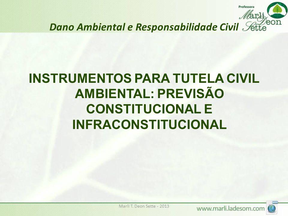 Dano Ambiental e Responsabilidade Civil
