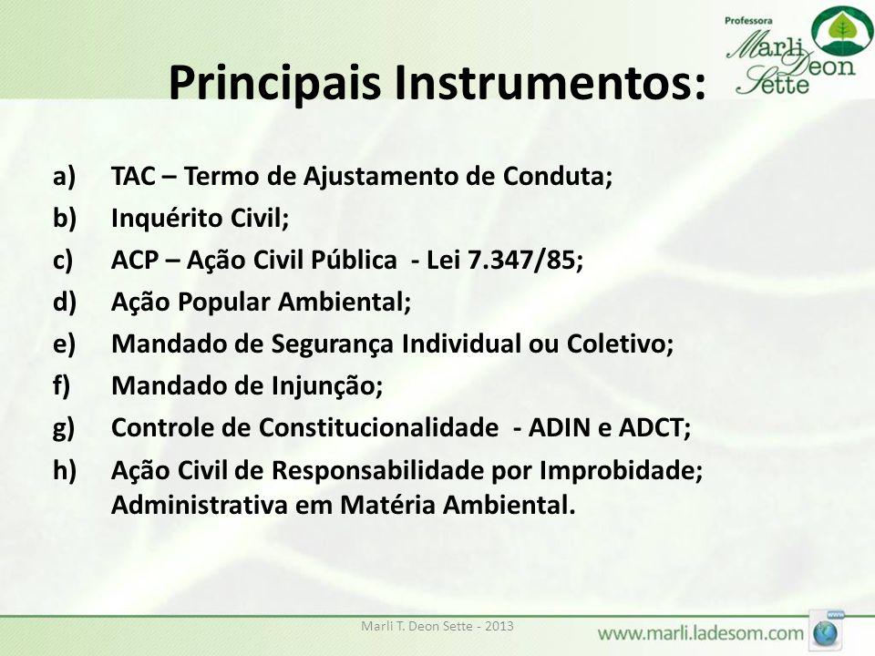 Principais Instrumentos: