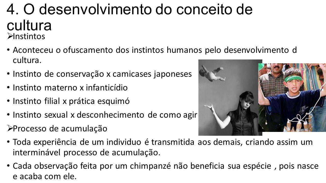 4. O desenvolvimento do conceito de cultura