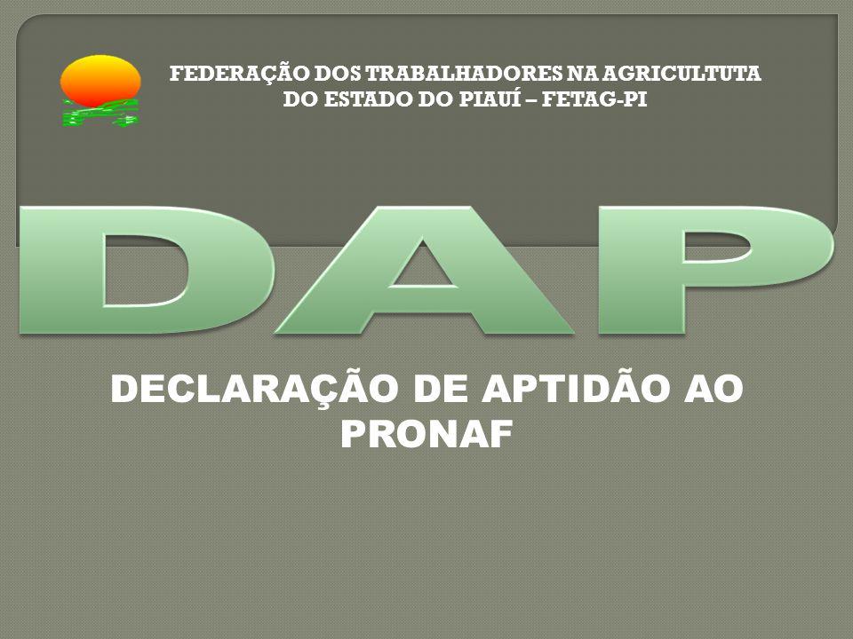 DECLARAÇÃO DE APTIDÃO AO PRONAF