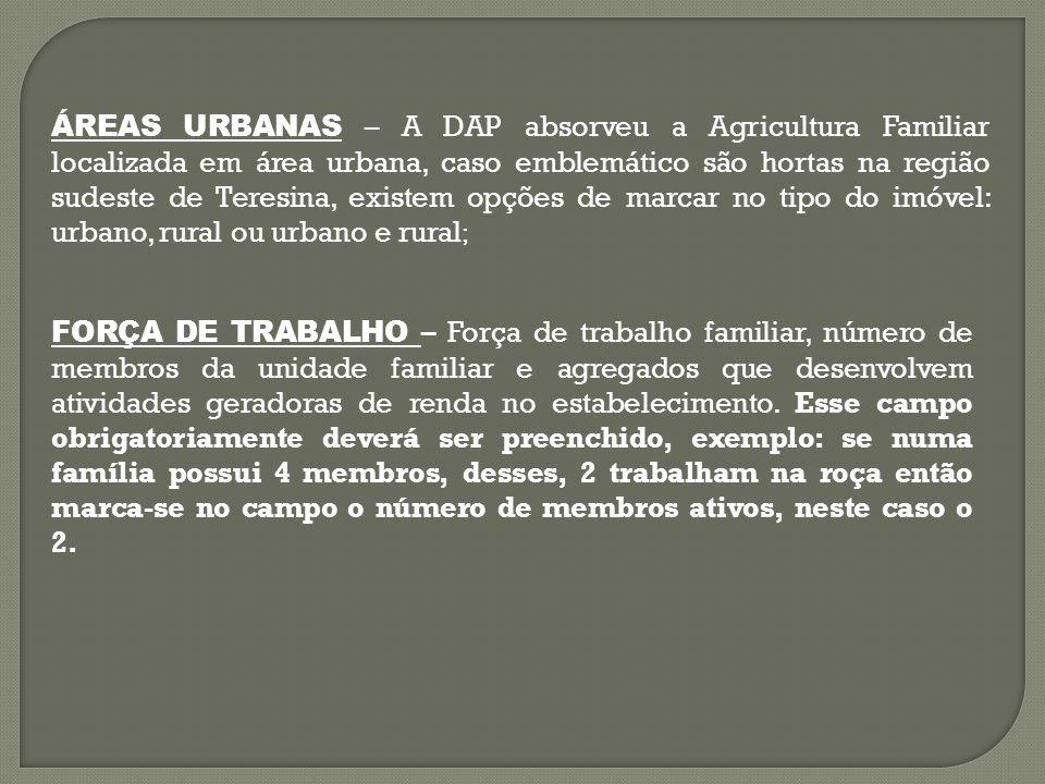 ÁREAS URBANAS – A DAP absorveu a Agricultura Familiar localizada em área urbana, caso emblemático são hortas na região sudeste de Teresina, existem opções de marcar no tipo do imóvel: urbano, rural ou urbano e rural;