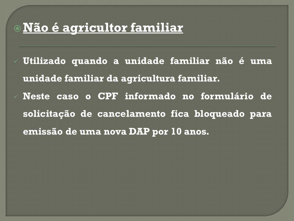 Não é agricultor familiar