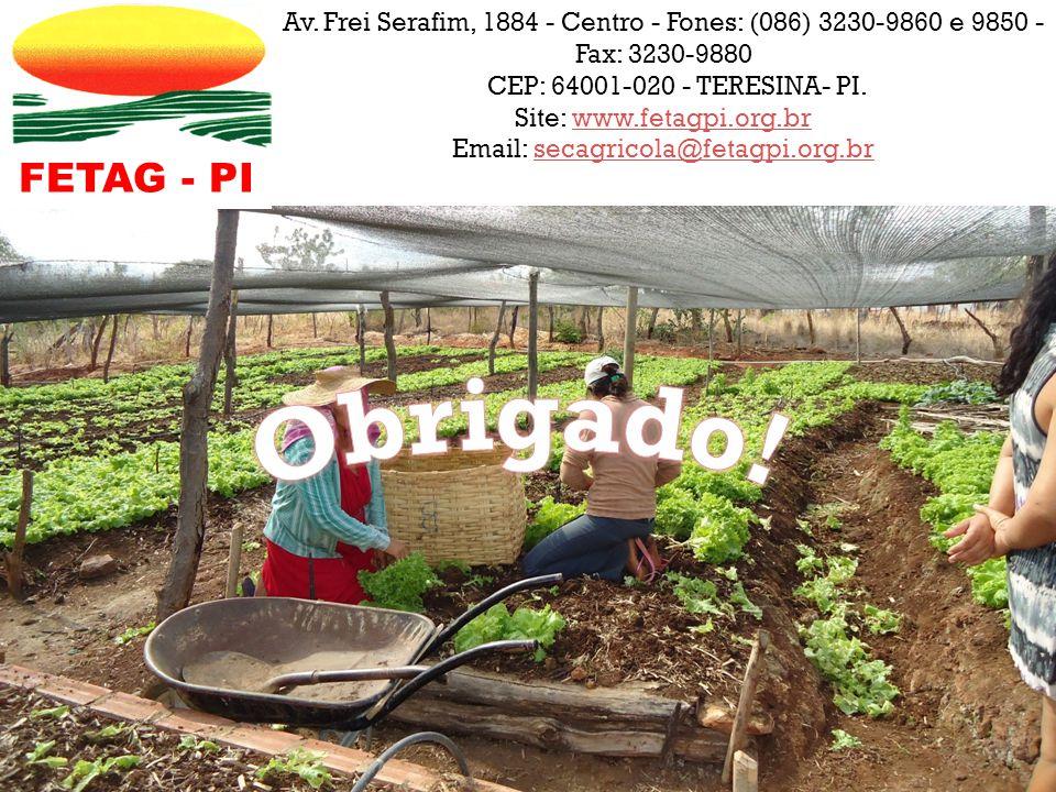 Site: www.fetagpi.org.br