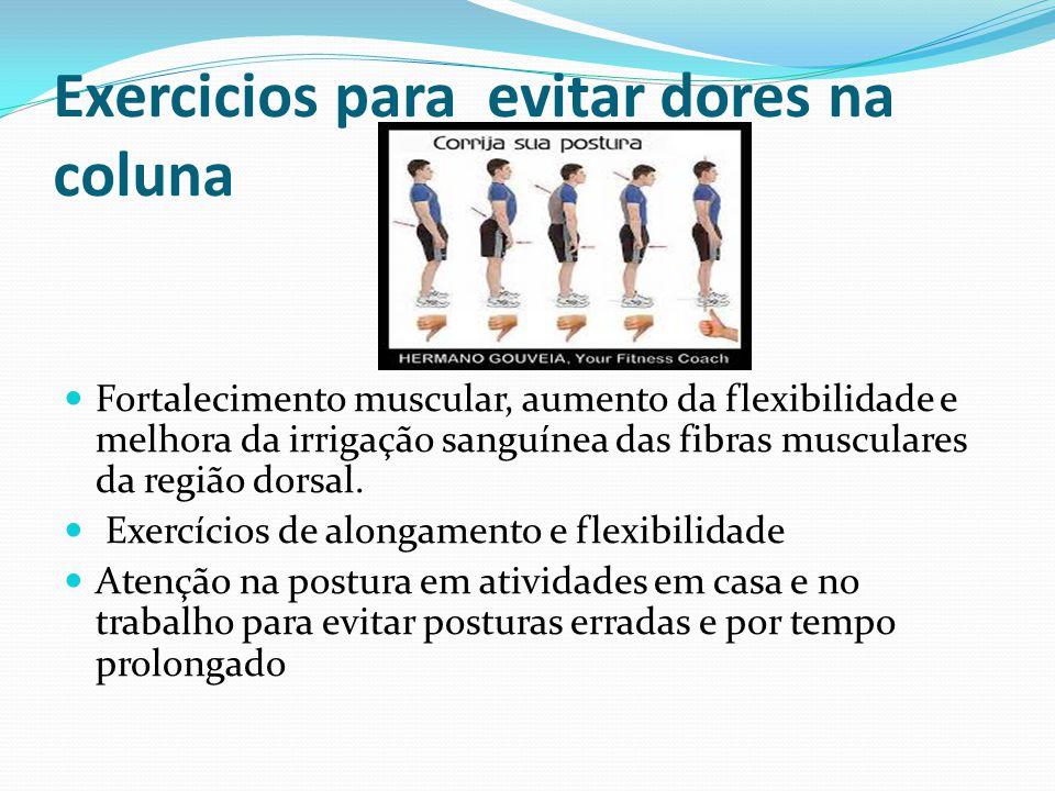 Exercicios para evitar dores na coluna