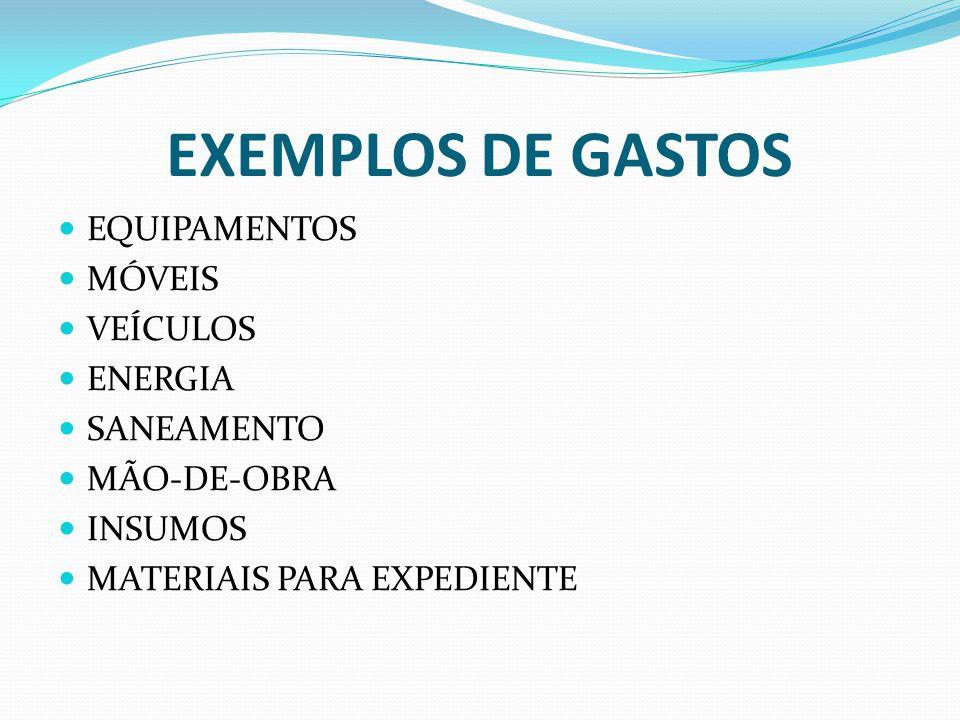 EXEMPLOS DE GASTOS EQUIPAMENTOS MÓVEIS VEÍCULOS ENERGIA SANEAMENTO