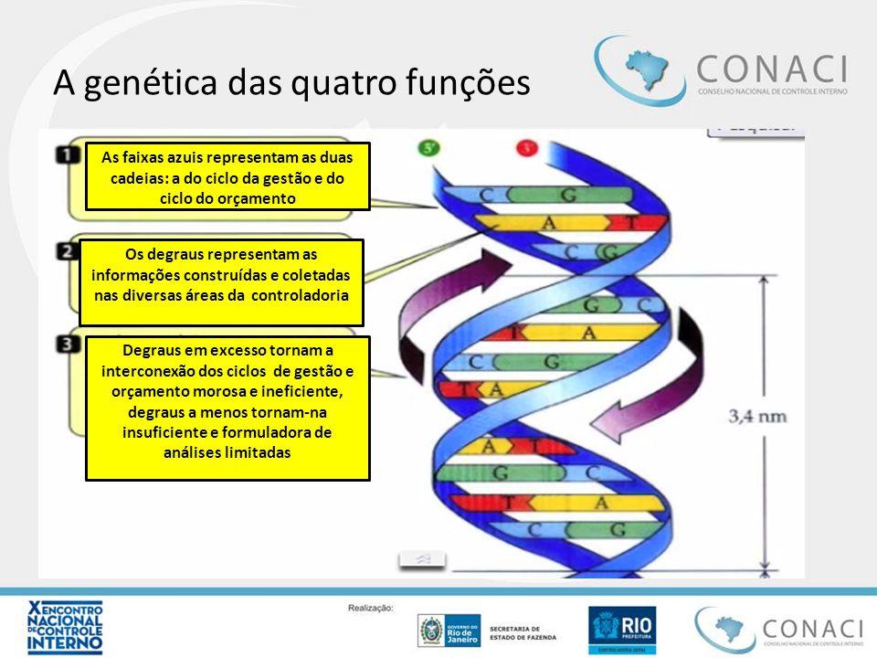 A genética das quatro funções