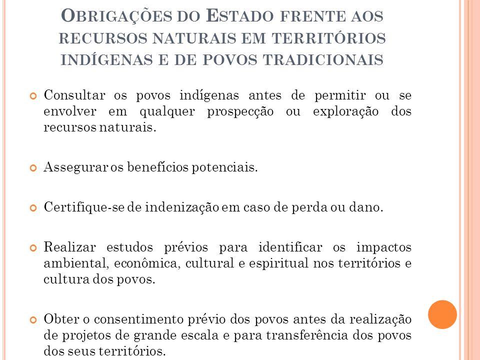 Obrigações do Estado frente aos recursos naturais em territórios indígenas e de povos tradicionais