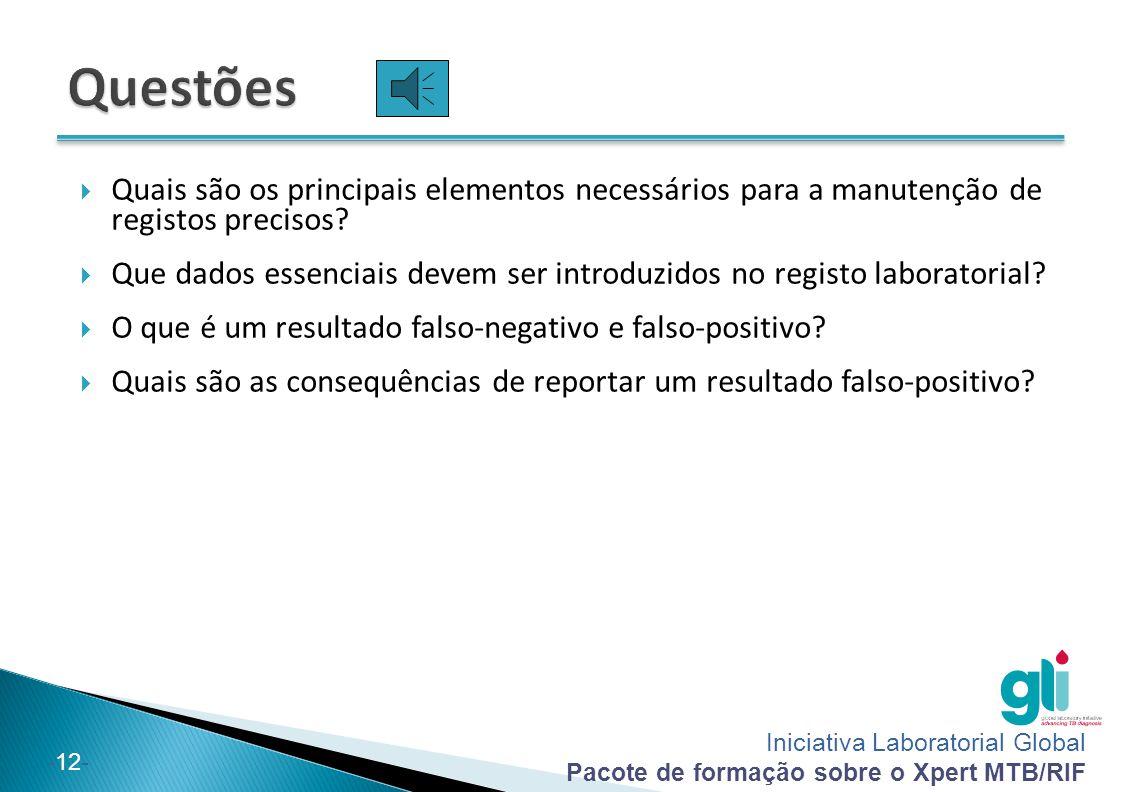 Questões Quais são os principais elementos necessários para a manutenção de registos precisos