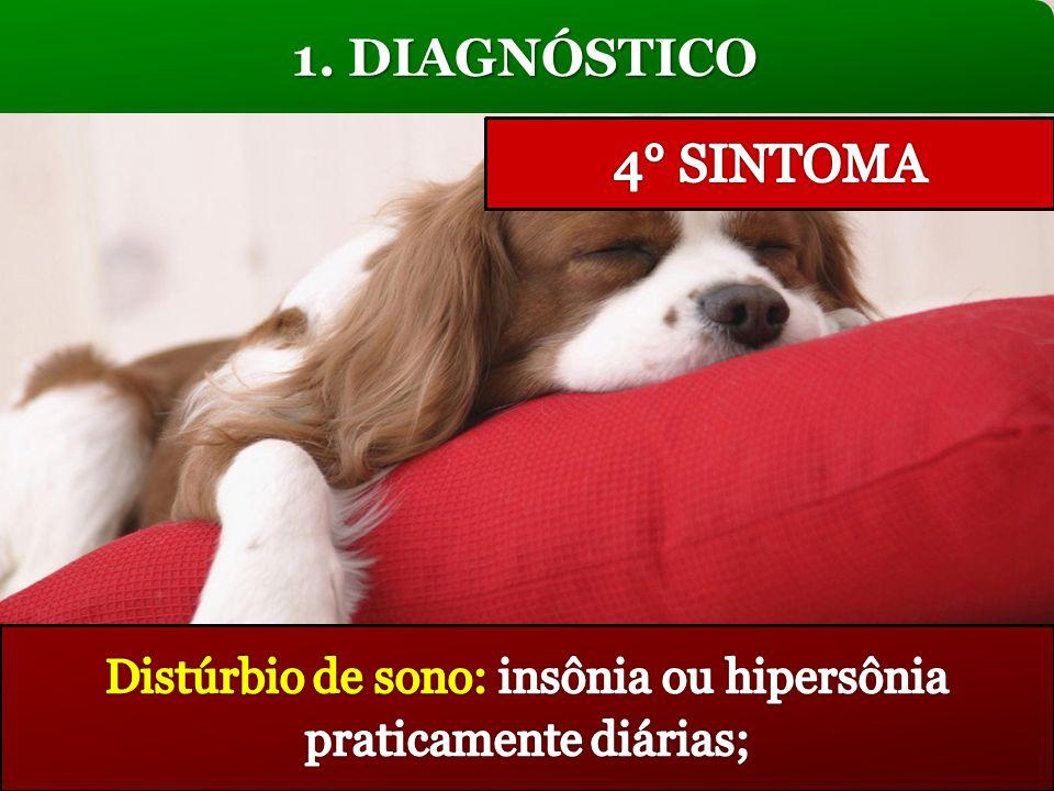 Distúrbio de sono: insônia ou hipersônia praticamente diárias;