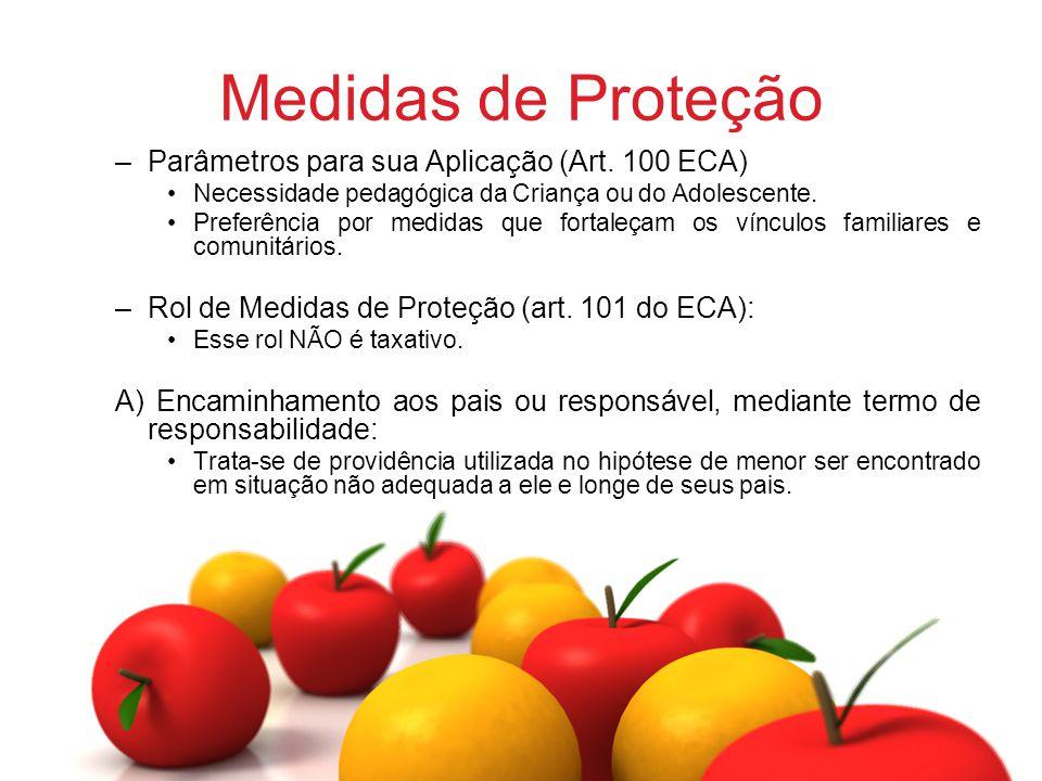 Medidas de Proteção Parâmetros para sua Aplicação (Art. 100 ECA)