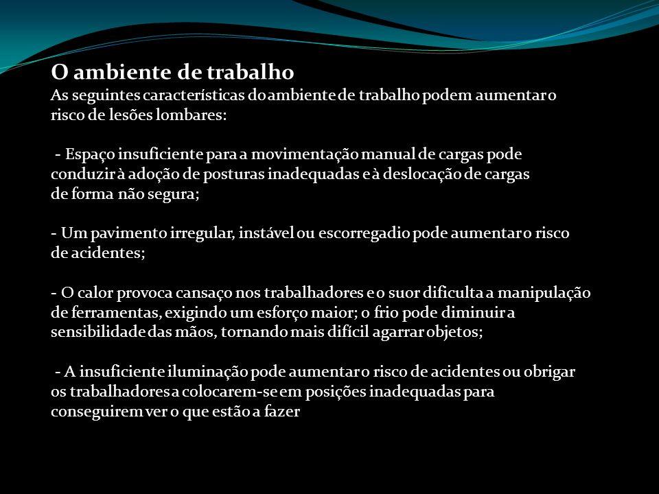 O ambiente de trabalho Prof. Sérgio Amaral
